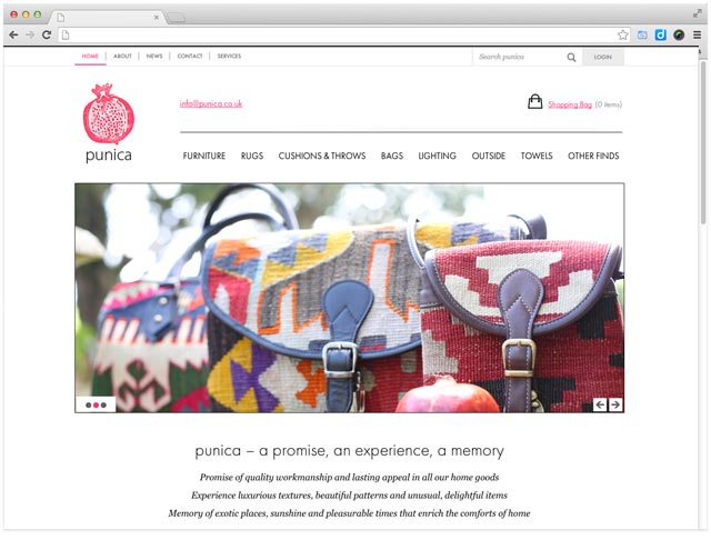 web-design-for-ecommerce-punica