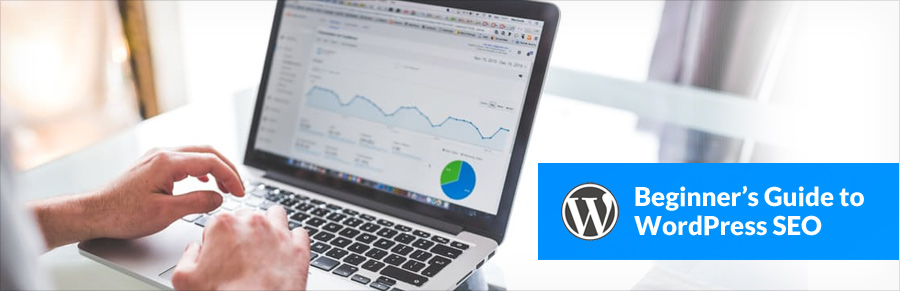beginners-guide-to-wordpress-seo